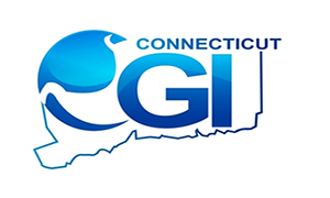 Connecticut GI logo